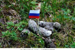 В России заблокировали Shutterstockиз-за фото триколора в кучке фекалий