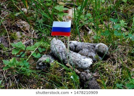 У Росії заблокували Shutterstock через фото триколора в купці фекалій