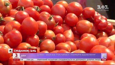 Почему и на сколько подорожали томаты в Украине - Экономические новости