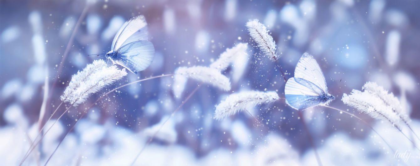 Шанс поправить свои дела во всех сферах жизни: гороскоп на 6 декабря