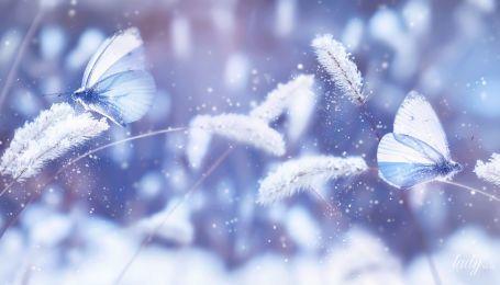 Шанс поправить свои дела во всех сферах жизни: гороскоп на завтра, 6 декабря