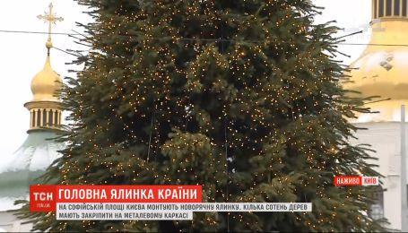 У столиці на Софійській площі монтують головну ялинку країни