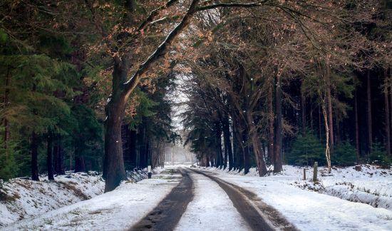 На дорогах ожеледиця, а температура до 11 градусів морозу: погода на середу