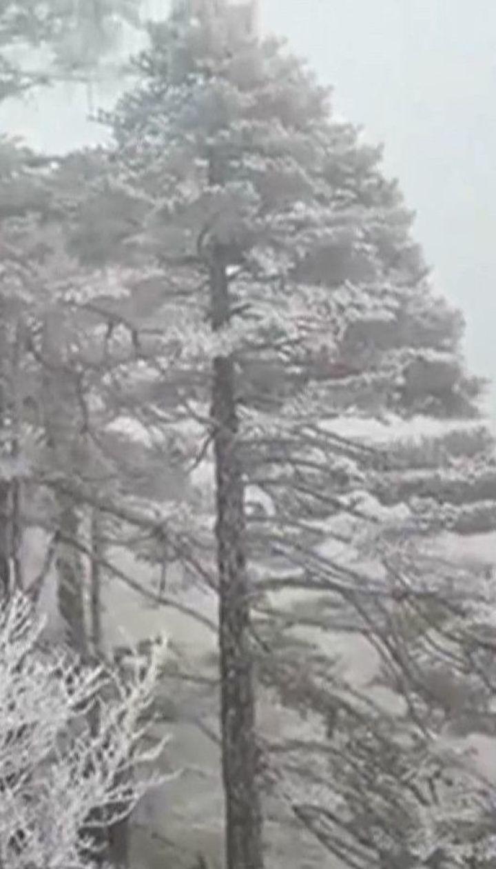 """У китайському парку, де знімали фільм """"Аватар"""", вкрило кригою дерева та водоспади"""