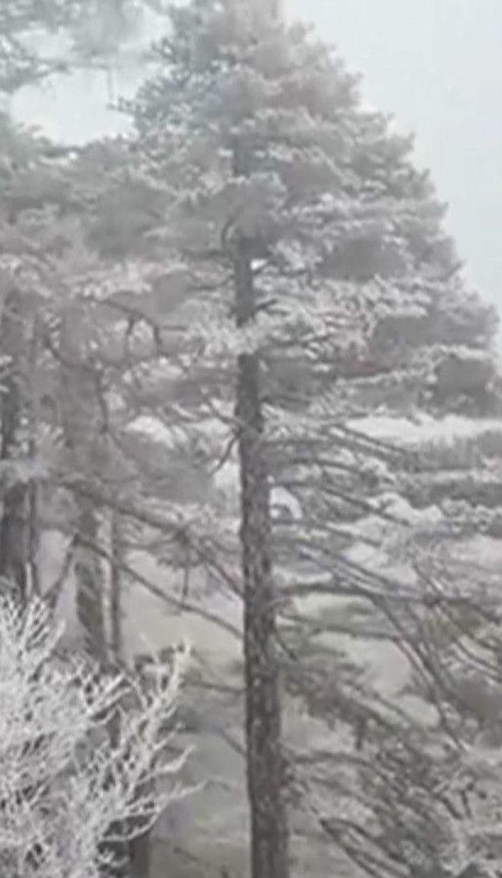 """В китайском парке, где снимали фильм """"Аватар"""", покрыло льдом деревья и водопады"""