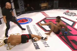 Бійці MMA одночасно нокаутували один одного під час турніру в Португалії