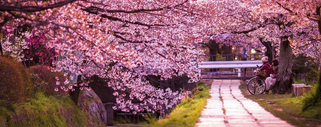 Определены самые красивые улицы мира