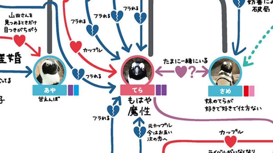 мапа стосунків пінгвінів