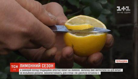 Откуда в Украину привозят лимоны и как выбрать лучший