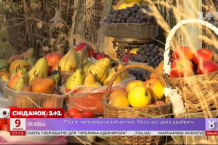 За последнюю неделю цены на отечественную грушу выросли почти на 20 процентов – экономические новости