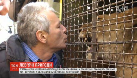 Из Украины в Южную Африку торжественно провожали пять львов