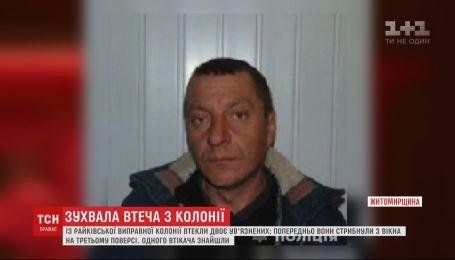 Вистрибнули із 3 поверху та втекли: на Житомирщині шукають двох в'язнів