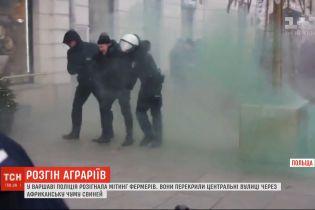 В польской столице полиция силой разогнала демонстрацию фермеров