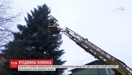Біля Оперного театру у Львові готуються до встановлення новорічної ялинки
