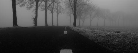 Туман и до 3 градусов тепла: погода на понедельник