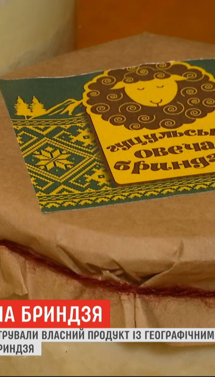 Гуцульська овеча бриндзя стала першим українським продуктом, що має географічне зазначення