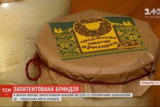 Брындзя стала первым украинским продуктом с географическим названием: что это даст украинским пастухам овец