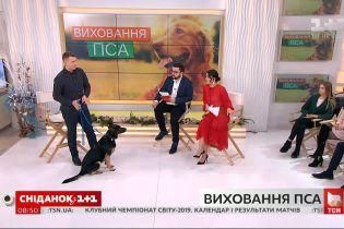 Військовий кінолог Владислав Плахтій розказав про основні методи виховання собаки