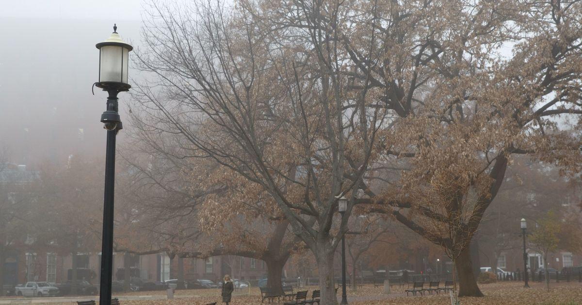 Прогноз погоди на 26 листопада: в Україні місцями буде дощ і туман, температура повітря - до +8