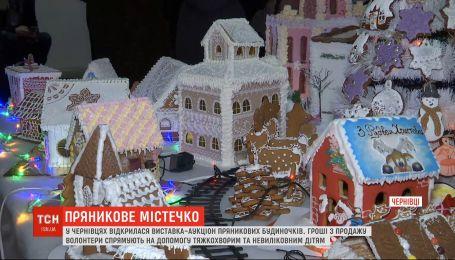 В Черновцах открылась выставка-аукцион пряничных домиков