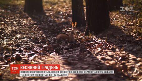 Весна накануне Нового года: в Украину пришло потепление