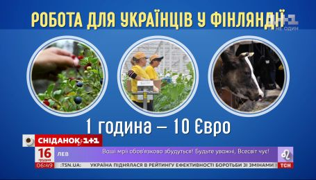 Украинцы побили рекорд на рынке труда в Финляндии