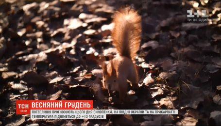 Весняний грудень: в Україні потеплішає до +15 градусів