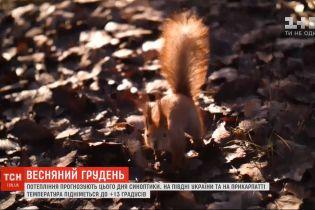 Весенний декабрь: в Украине потеплеет до +15 градусов