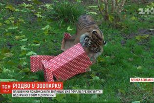 Справжнє Різдво влаштували для мешканців лондонського звіринця