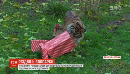 Настоящее Рождество устроили для жителей лондонского зоопарка