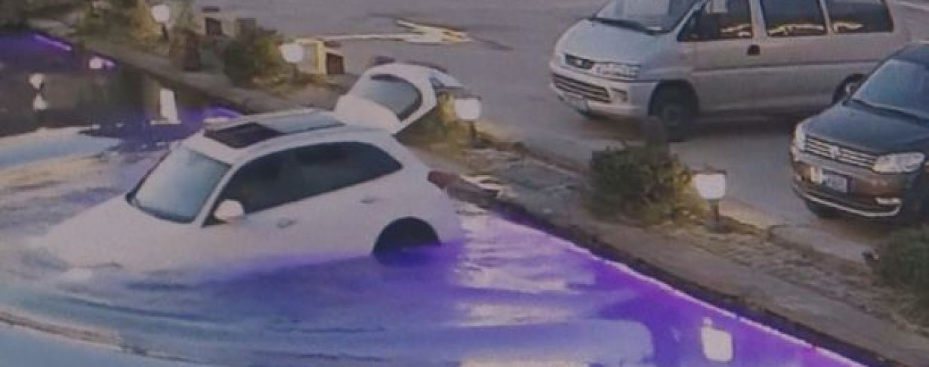 У Китаї радісний собака втопив автомобіль у водоймі