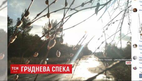 Декабрьская жара: синоптики обещают в Украине почти рекордное потепление