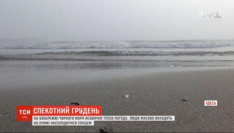 Весна в декабре: в некоторых областях Украины температура воздуха бьет рекорды