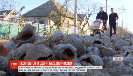 В Одесской области ямы на дороге засыпали ракушками рапана