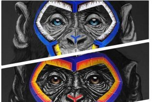 В Серии А извинились за арт-инсталляцию с обезьянами