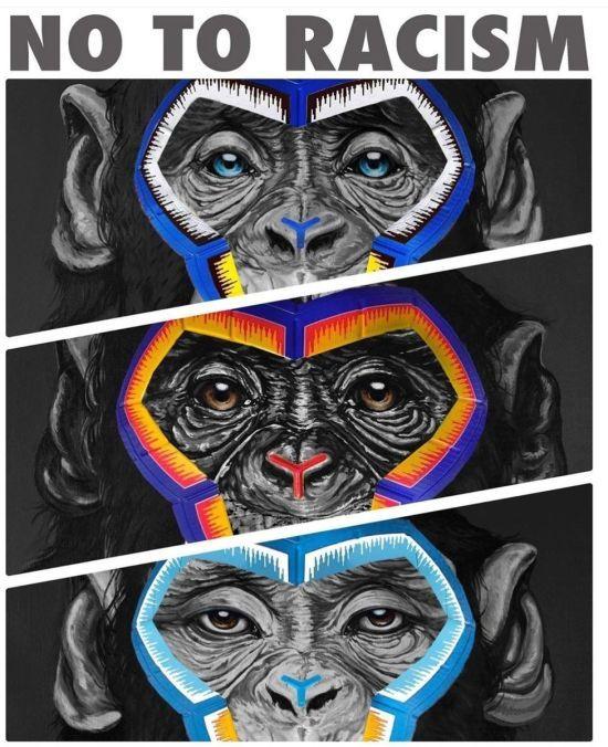 У Серії А перепросили через арт-інсталяцію з мавпами