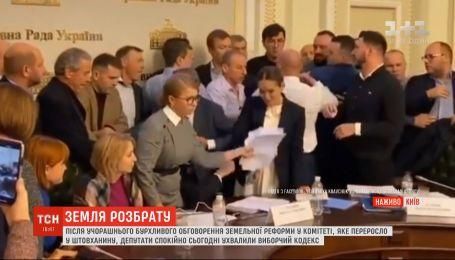 Кива махал руками, а Тимошенко разбросала бумаги: как земельный вопрос рассорили депутатов