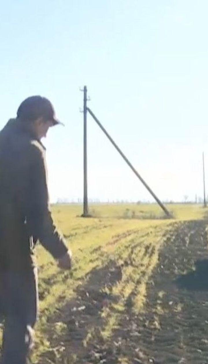 Из-за продолжительной засухи на юге Одесской области погибают озимые