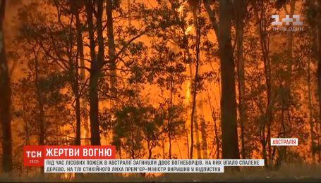 Двое пожарных погибли в результате лесных пожаров в Австралии