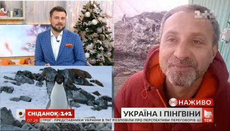 Украинская Антарктида: зачем 24-я экспедиция исследует пингвинов