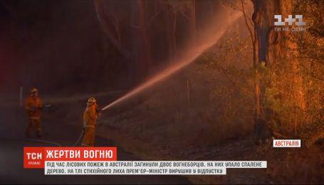 Во время лесных пожаров в Австралии погибли двое пожарных