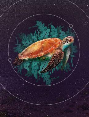 Найстаріші живі організми на планеті