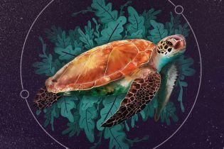 ТСН stories. Черепаха-долгожитель и лес, которому более 80 тысяч лет: самые старые живые организмы на планете