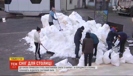 Під Аркою дружби народів у столиці відкриють сніговий парк