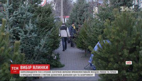 От 100 гривен до 7 тысяч: что предлагают на елочных базарах в разных городах Украины