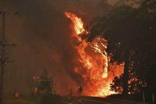 Як зміни клімату сприяли катастрофі: в Австралії розпочнуть незалежне розслідування причин масштабних пожеж