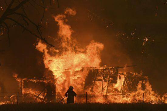 В Австралії за новорічну ніч зібрали мільйон доларів для допомоги потерпілим від пожеж