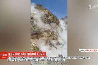 У Новій Зеландії до 17 зросла кількість загиблих внаслідок виверження вулкана