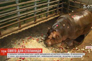 Праздничный торт и лепестки роз: в зоопарке Харькова поздравили с днем рождения бегемотиху