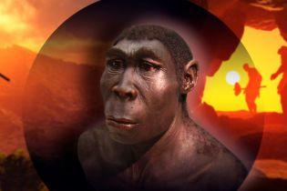 Ученые раскрыли тайну загадочного вымирания Homo erectus. Что убило древних предков человека